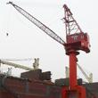 MQ5070D Portal Crane